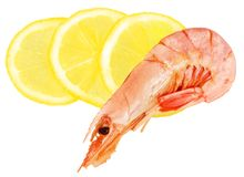 Boiled shrimp Royalty Free Stock Photos