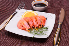 Boiled shrimp on a square plate Royalty Free Stock Photo