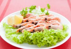 Boiled shrimp on a white plate Royalty Free Stock Photos