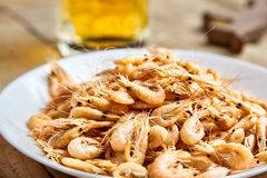 Boiled shrimp on white plate, beer mug behind Royalty Free Stock Photography