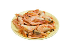 Boiled shrimps. On a yellow plate. It is isolated on a white background Royalty Free Stock Photography