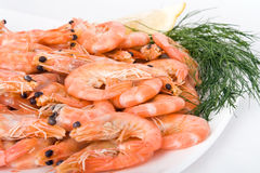 Boiled Shrimps Stock Photos