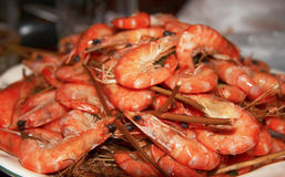 Boiled Shrimps Background ready for eating Royalty Free Stock Images