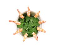 Boiled shrimps and fresh spinach. Royalty Free Stock Photography