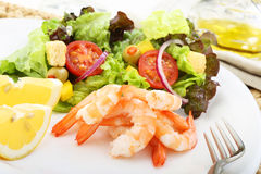 Boiled shrimps with salad Stock Photography