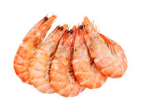 Boiled shrimps Royalty Free Stock Images