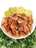 Boiled shrimps with lemon slices and parsley Stock Image