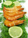 Boiled shrimps with lemon slices and parsley Stock Photos