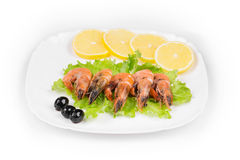 Boiled shrimps Stock Photography