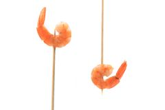 Boiled shrimps on skewers. Stock Photos