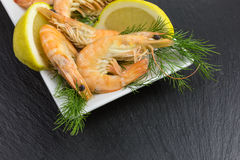 Boiled shrimps on slate. Background with dill and lemon Stock Photo