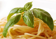 Boiled spaghetti with basil Royalty Free Stock Photos