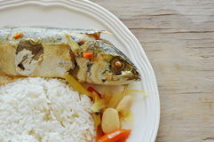 Boiled spicy mackerel with herb and rice on plate. Boiled spicy mackerel with herb and plain rice on plate Royalty Free Stock Photo