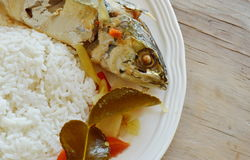 Boiled spicy mackerel with herb and rice on plate. Boiled spicy mackerel with herb and rice on white plate Stock Images