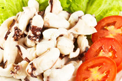 Boiled Squid. Boiled squid cooked with fresh tomatoes Royalty Free Stock Image