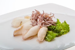 Boiled squid Royalty Free Stock Photos