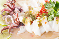 Boiled squid served in white dish Royalty Free Stock Photography