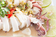 Boiled squid served in white dish Stock Photography