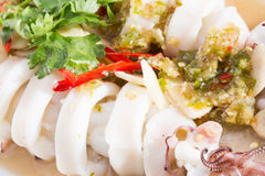 Boiled squid served in white dish Stock Photos