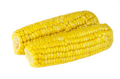 Boiled sweet corn on cob Stock Photography