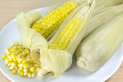 Boiled sweet corn Stock Images