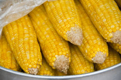 Boiled sweet corn. Royalty Free Stock Images