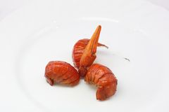 Boiled, tail claw Royalty Free Stock Images