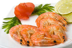 The boiled tiger shrimps Royalty Free Stock Photo