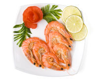 The boiled tiger shrimps Stock Photo