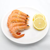 Boiled tiger shrimps with lemon slice Stock Photography