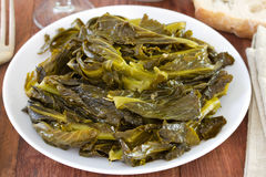 Boiled turnip greens Royalty Free Stock Photo
