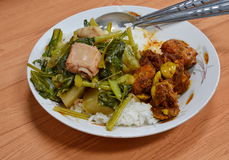 Boiled vegetable and stir fried curry pork rib. On rice royalty free stock image