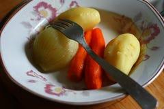 Boiled vegetables. Stock Image