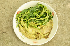 Boiled vegetables in the plate. Boiled vegetables in white plate close up Royalty Free Stock Photos