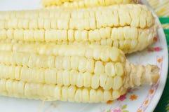 Boiled waxy corn Stock Photos
