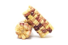 Boiled waxy corn Royalty Free Stock Photography