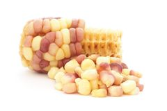 Boiled waxy corn Royalty Free Stock Photo