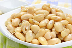 Boiled white beans Royalty Free Stock Photos