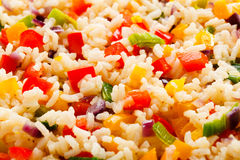Boiled white rice Stock Images