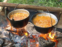 Boiling caldrons on wood fire Royalty Free Stock Photography