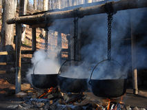Boiling Cauldrons Stock Image