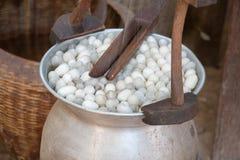 Boiling cocoon silkworm Stock Photos