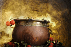 Boiling copper halloween cauldron Stock Images