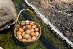Boiling Eggs Hotspring. Boiling Eggs at Chae son National Park Hot Spring, Thailand royalty free stock photography