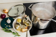 Boiling fish soup royalty free stock image