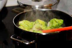 Boiling fresh vegetables Royalty Free Stock Photo