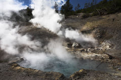 Boiling geothermal geyser Royalty Free Stock Image