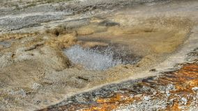 Boiling geyser in Yellowstone Stock Photos