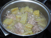 Boiling green bitter melon or bitter gourd with spareribs soup Stock Photography