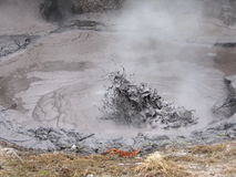 Boiling Mud Stock Image